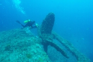 Diver Jane Kennedy filming Quetta's propeller.